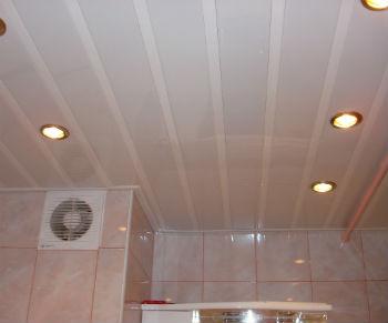 Потолки в ванной из сайдинга достаточно долго служат и позволят обойтись без ремонта в помещении на протяжении следующих 10 лет