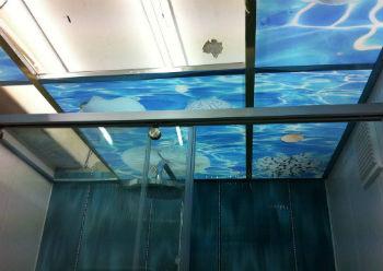 Стеклянные потолки представляют собой подвесные конструкции