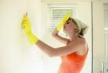 Плесень на стенах в ванной: подбираем эффективные противогрибковые средства