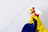 Плесень между плитками кафеля в ванной: как победить опасного врага?