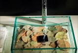Какую выбрать раковину для ванной комнаты (с фото)