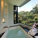 Необычные ванны - красивое оформление (фото 2015)